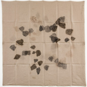 Helen Mirra, Hourly directional field notation, 9 10 11 12, 20 October, Southern Taconic Range, 2011, oil and graphite on linen, 61 x 61 inches