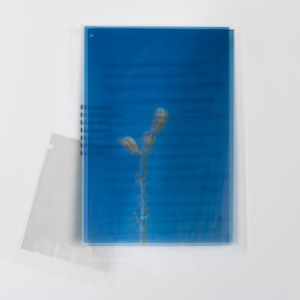 Charisse Pearlina Weston, Black Blueprint, 2017, digital photographic print on transparencies, 9 x 12 inches