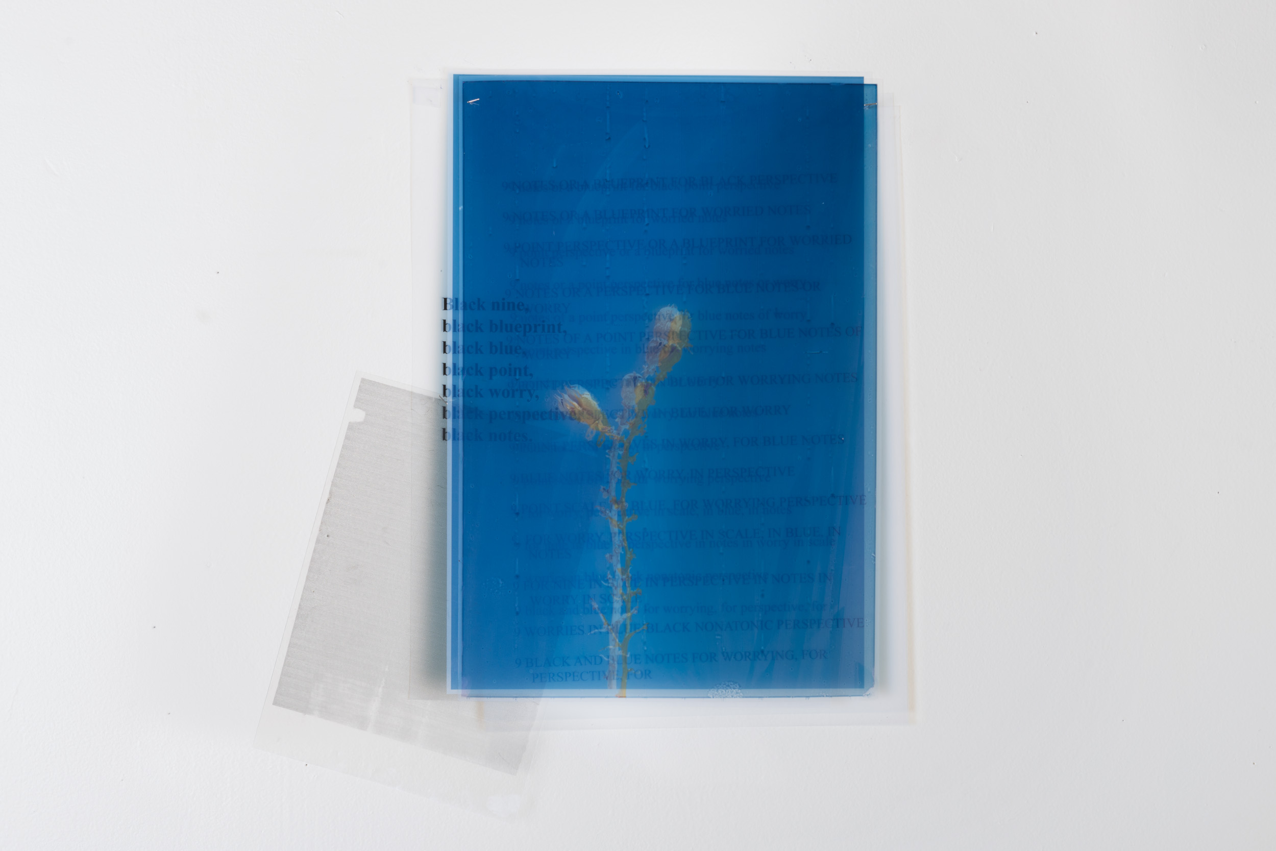 Charisse pearlina weston black blueprint 2017 digital charisse pearlina weston black blueprint 2017 digital photographic print on transparencies 9 malvernweather Image collections