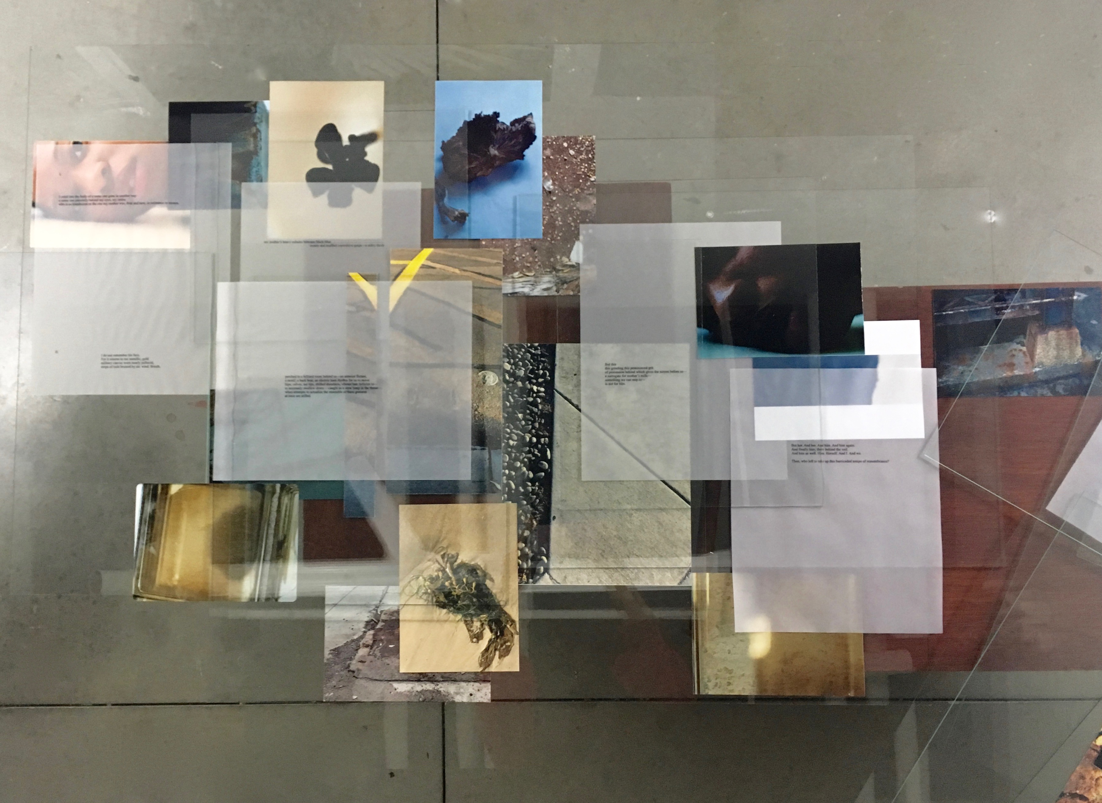 Charisse Pearlina Weston, The immaterial imaginary of rhythm moistened black salt into translucence, 2016, replacement frame, glass, inkjet photographs, text on vellum, wood sculpture, dimensions variable