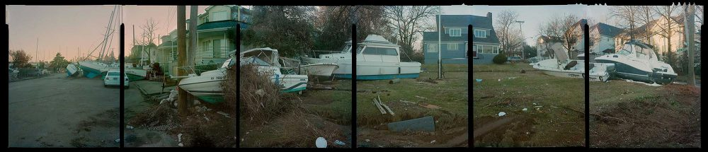 Accra Shepp, Eltingville, Staten Island, 2012, ink jet print, 24 x 110 inches