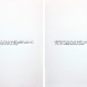 Bethany Collins, Skin, 1965 , 2014, Xerox transfer on American Masters paper, 30 x 44 inches