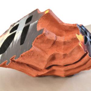 Carol Jackson, Cod Piece, 2014, paper mache, acrylic, digital print, 43 x 28 x 14 inches