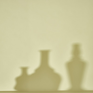 Catherine Wagner, Musings on Morandi