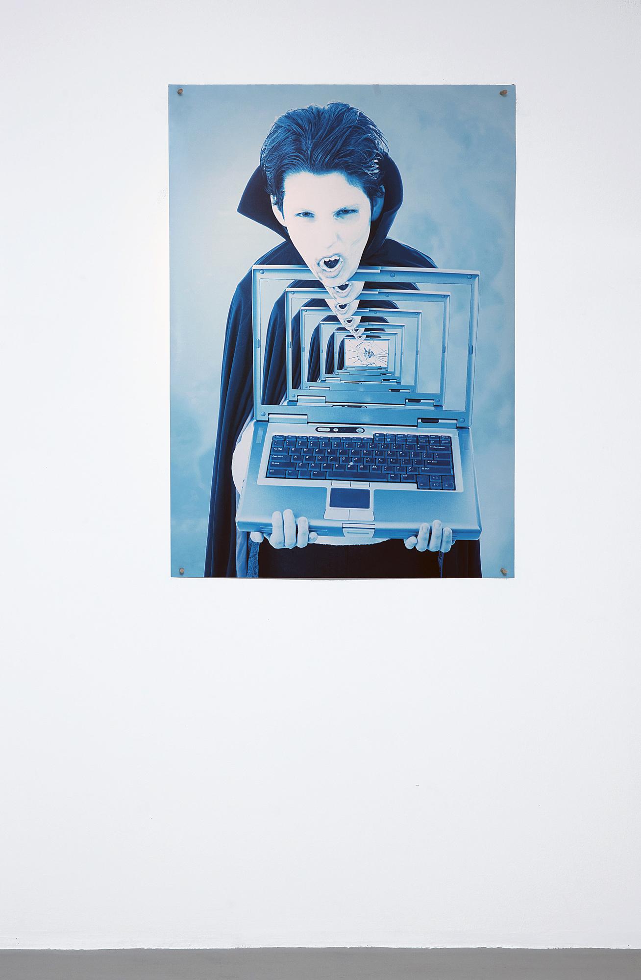Eileen Maxson Reality Bites, 2012, Archival Inkjet Print, Wooden Tacks, 33 x 47 inches