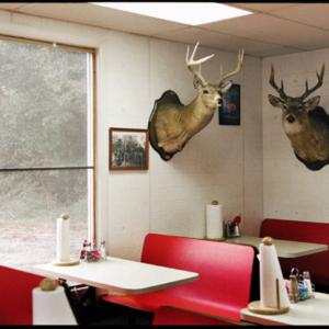 Jerry Siegel, Deerheads, 2002