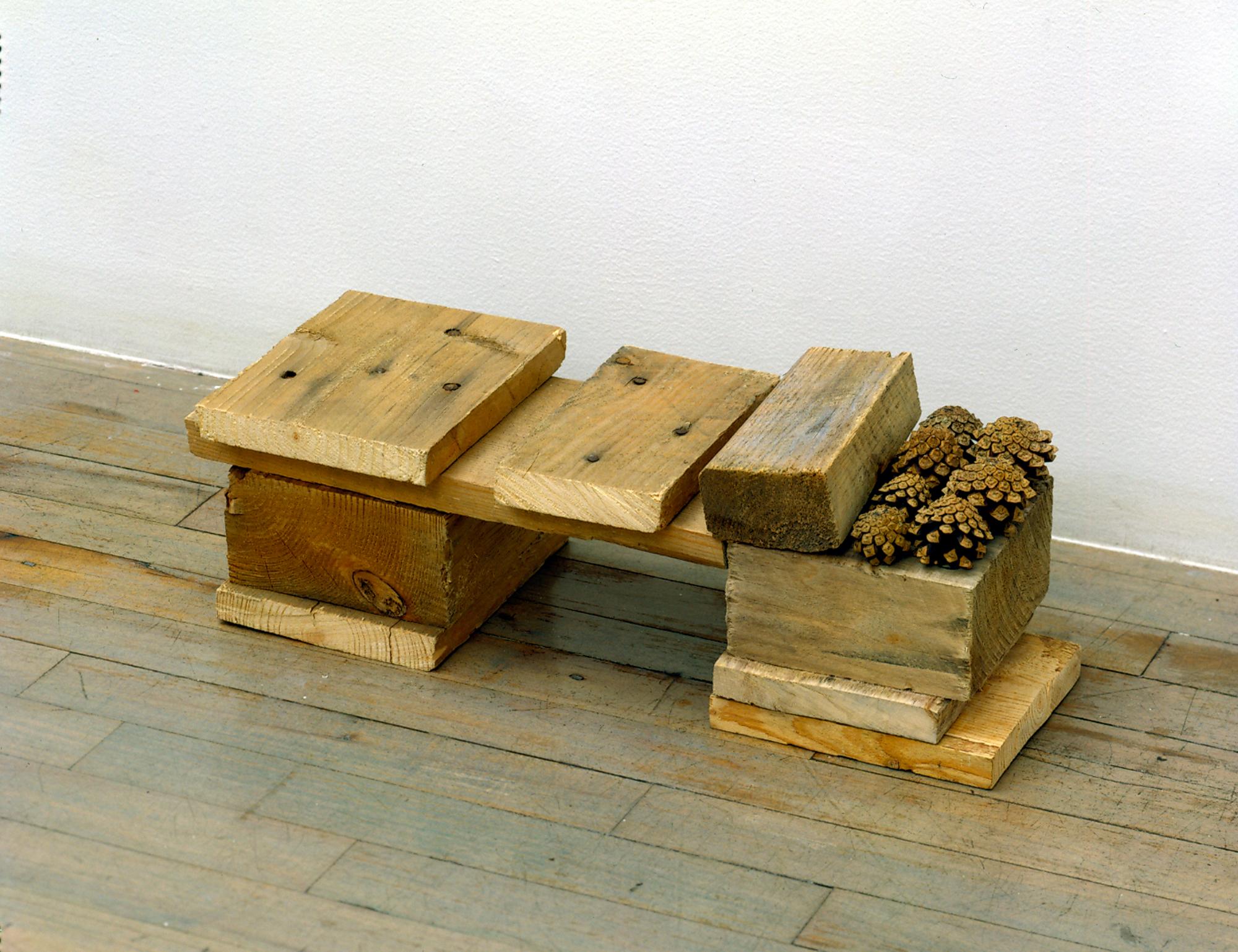Helen Mirra, Unirondack, 2006, pallet wood, pine cones, 7 1/6 x 19 1/4 x 7 1/8 inches