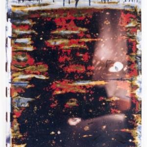 Ryan Foerster, Untitled, 2014 C-print, debris, 40 x 30 inches
