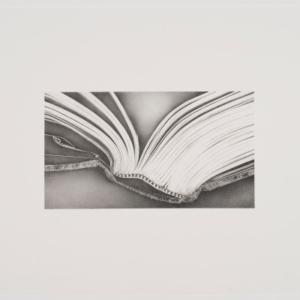 Rosana Castrillo Díaz, Untitled, 2009