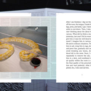 Irena Haiduk, Night of the World, 2013, translation of Omophagia printed on a table with the text hiding under a coat scratch-off paint, worn away by an albino boa over time