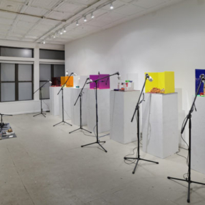 Georgia Sagri, Daily Bread, 2015, exhibition, supported by Issue Project Room, hosted by Mathew_nyc