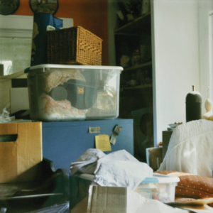 Amy Blakemore, Someone's Living Room, 2010, chromogenic print, 12 x 12 inches