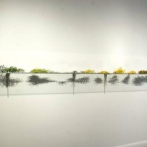Gyun Hur, A Requiem in the Garden, 2009, hand-shredded silk flowers, silk flowers inner parts, 20 x 18 x 5 x 3 1/2 feet