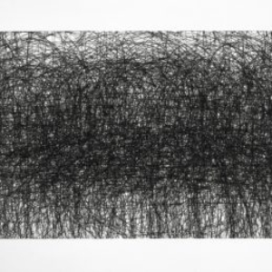 Howie Cherman, Gattaca, 2013, graphite crayon on wall, 30 x 16 9/10 inches