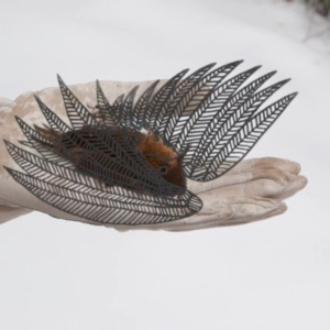 Julia Oldham, Still Bird
