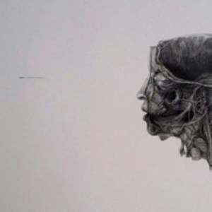 Xiaowei Chen, Witness 2013, 2013, ink line on paper, 28 x 48 inches