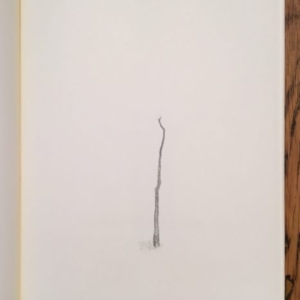 Augusto Di Stefano, tree; one (model two), 2014, graphite on paper within notebook, 9 7/8 x 7 1/4 inches