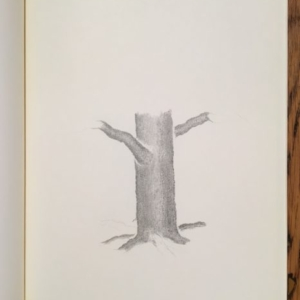 Augusto Di Stefano, tree; two (model two), 2014, graphite on paper within notebook, 9 7/8 x 7 1/4 inches