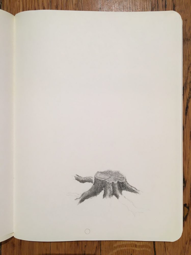Augusto Di Stefano, tree; five (model three), 2014, graphite on paper within notebook, 9 7/8 x 7 1/4 inches