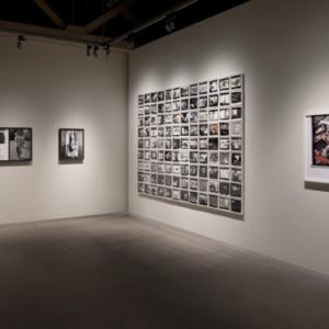 Jim Goldberg, Raised by Wolves installation from Raised by Wolves, Pier 24, 2011, installation, dimensions variable
