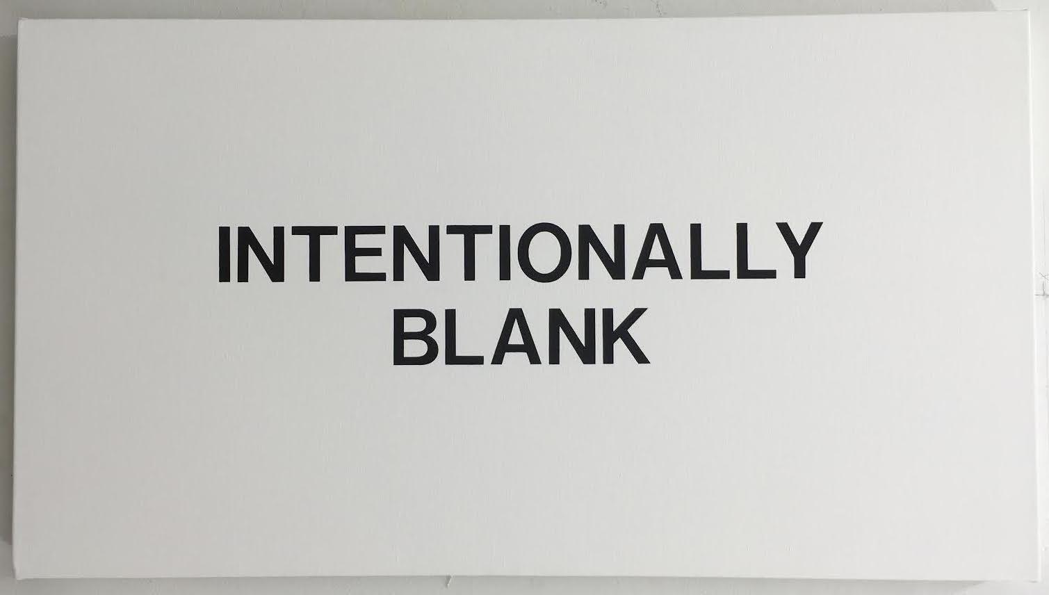 Rachel Hecker, Intentionally blank #2, 2016, acrylic on canvas, 20 x 36 inches