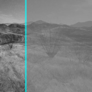Julio Cesar Morales, We are the Dead #8, 2013, video study; digital type C-print, 16 x 20 inches, edition of 3 + AP