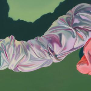 Brett Reichman, Satin Cock, 2006, oil on canvas, 24 x 48 inches. Image courtesy of www.brettreichman.com