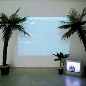 Joseph Grigely, Remembering is a difficult job, but somebody has to do it, 2004, mixed media installaiton : 2 single channel video projections (DV and super 8mm transfered to DVD), artificial palm trees, 3 c-prints and 1 b&w pigment print), variable; 2.35 and 4.55 minutes, looped without frame 3 x (60 x 90 cm); 25.5 x 20.5 cm, © All rights reserved, courtesy Air de Paris, Paris