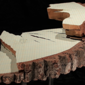 Martha Schlitt, Oak Ledger, 2003, ink, latex paint, oak on steel base, 30 x 28 x 8 inches