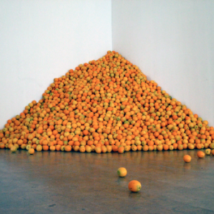 Allison Wiese, Untitled, 2005, 6 h x 9 w x 9 d, valencia oranges and cartons. Image courtesy of www.allisonwiese.com