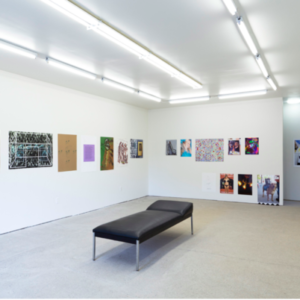 What Pipeline, Reproduction, 2013, image courtesy of www.whatpipeline.com