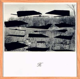 Tom Denlinger, Territorial, tbd_H, 1992 gelatin print, silkscreen, paper, 14 x 14 inches