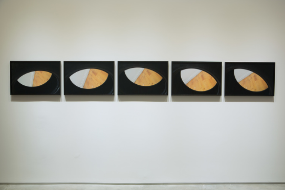 Tornadic, 2015, 5 digital C-prints, 16 × 120 inches