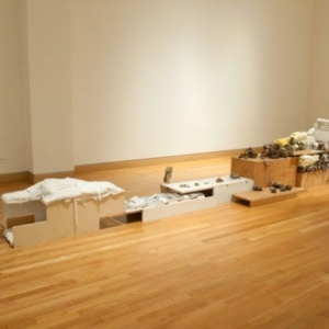 Kathryn Spence, Short sharp notes, a long whistled trill on one pitch, clear phrases, 2009-2012, plywood, scraps of sheets, towels, pants, sweaters, coats, jeans, t-shirts, umbrellas, stuffed (toy) animals, and fabric, field guides, samples, swatches, string, cardboard, newspaper, plastic bags, hairpins, play money, magazine photos, photocopies, beeswax, sand, mud, feathers, pins, pencils, wire, thread, Styrofoam. Image courtesy of Wirtz Art