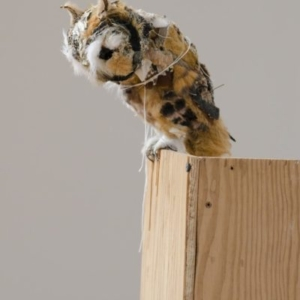 Kathryn Spence, Untitled (Eastern Screech Owl), 2010 Coats, pants, stuffed animals, sand, string, thread, wire, pins 8 x 3 1/2 x 6 inches. Image courtesy of Wirtz Art