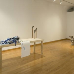 Kathryn Spence, Untitled, 2009, blue colored pencil, paper, fabric, pins, photographs, blanket, towel, magazine scraps, sand, wooden table, screech owls (Coats, pants, stuffed animals, sand, string, thread, wire, pins), 65 x 46 x 26 inches. Image courtesy of Wirtz Art