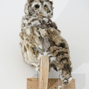 Kathryn Spence, Barred Owl and Object, 2011, skirt, pants, towel, toy stuffed bear and zebra, sand, floss, wire, string, thread, dirt, 21 x 8 x 12 inches. Image courtesy of Wirtz Art
