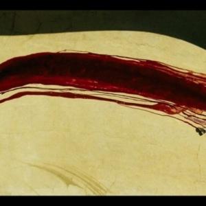 Kahlil Joseph, Until The Quiet Comes, 2012, 35mm motion picture still, 1240 x 775 pixels
