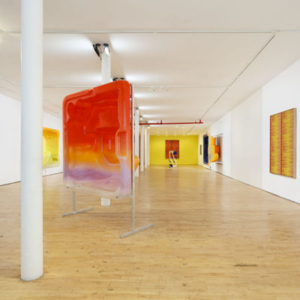 Mika Tajima, Total Body Conditioning at Art In General, 2014, waterborne automotive paint on cast acrylic resin polymer, aluminum, cotton, polyester, rayon, wood, wool, acoustic baffling felt, dimensions variable