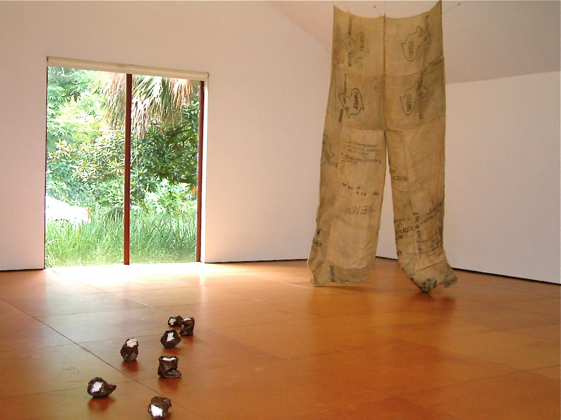 Kaneem Smith, Bearing Momentary Exotic Appeal and Relevance (installation view), 2008, 