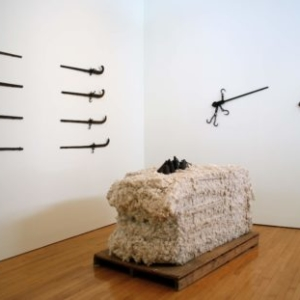 Kaneem Smith, Reap and Sow (installation view), 2013