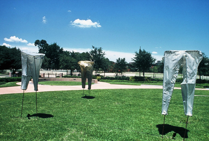 Kaneem Smith, Perceptive Limitation (installation view), 2009